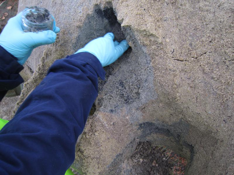 Environmental Sampling and Testing
